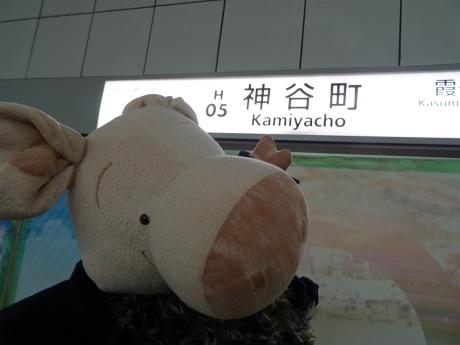 tokyo-c1.jpg