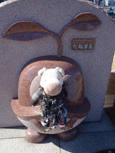 yukohama72.jpg